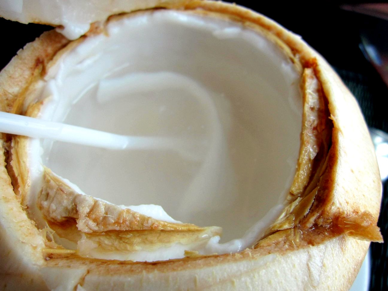 coconut-meat-1