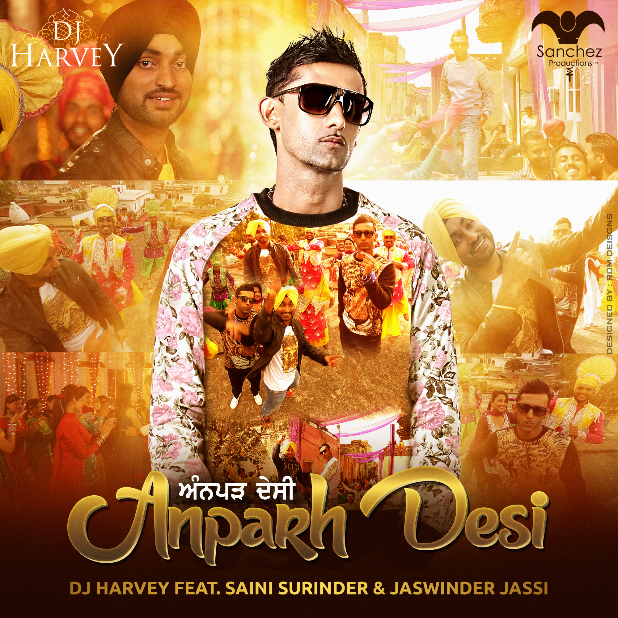 Anparh Desi Official artwork